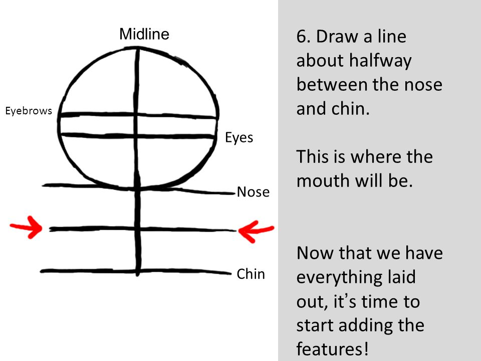 6. Draw a line about halfway between the nose and chin.
