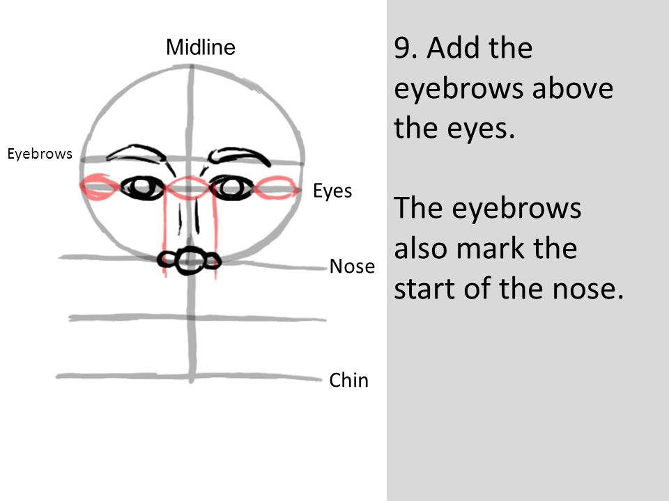 9. Add the eyebrows above the eyes.