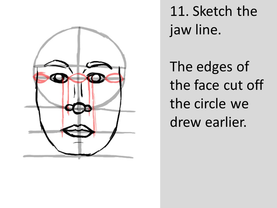 11. Sketch the jaw line. The edges of the face cut off the circle we drew earlier.