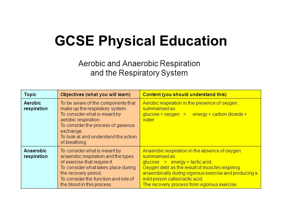 Gcse physical education ppt video online download gcse physical education 2 the respiratory system ccuart Gallery