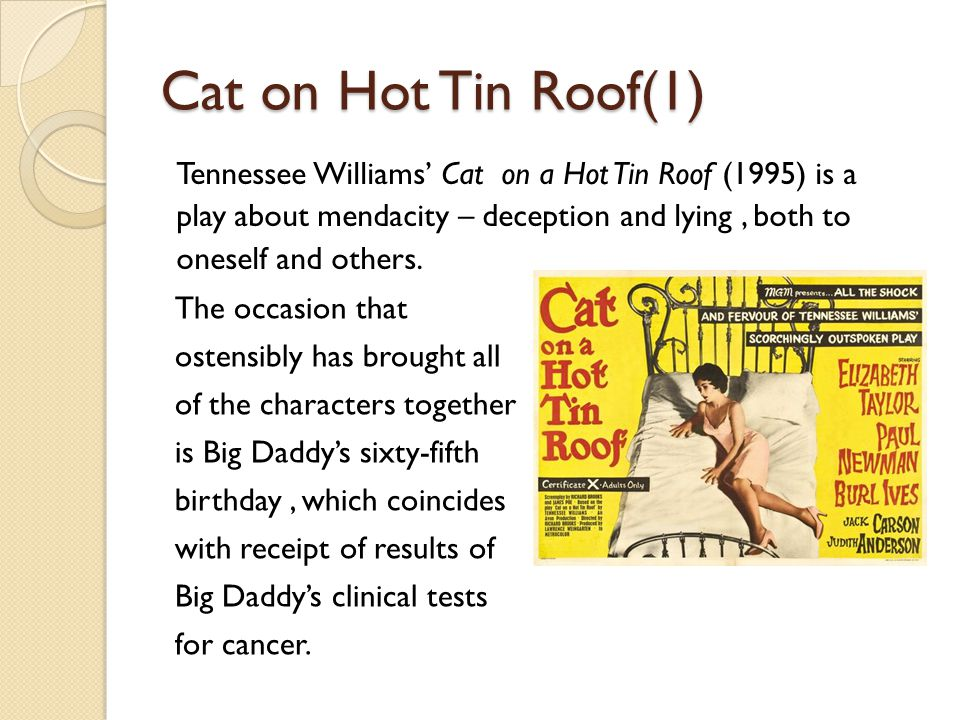 cat on a hot tin roof character analysis brick The tennessee williams annual review  cat not only observes brick's  more ambiguous meditation on the plight of each character in cat on a hot tin roof.