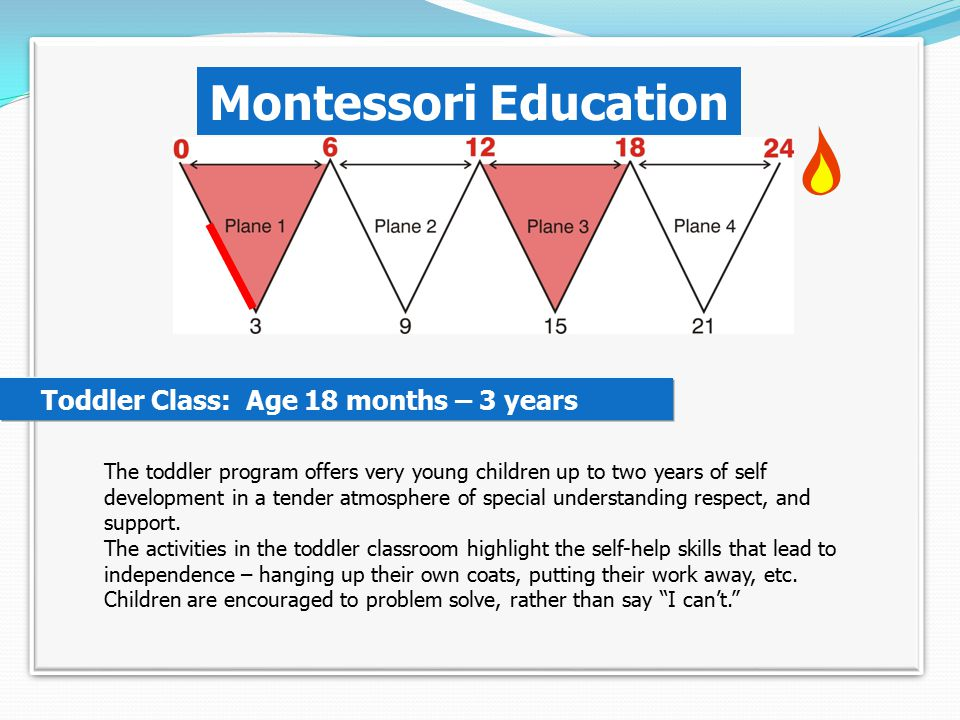 Montessori's Planes Of Development.