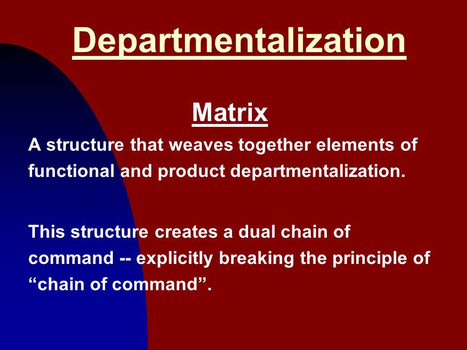 Departmentalization Matrix