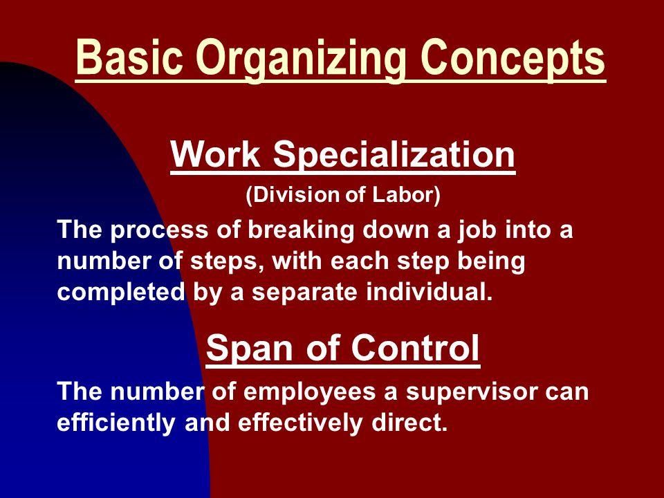 Basic Organizing Concepts