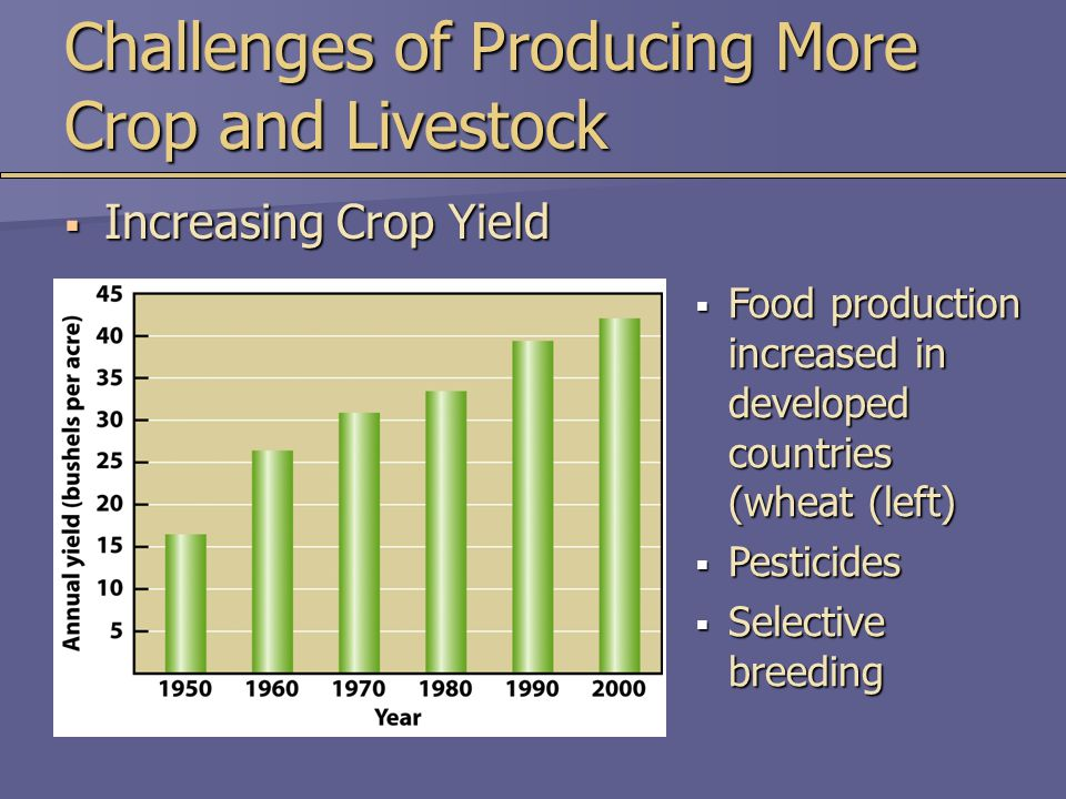 Challenges of Producing More Crop and Livestock