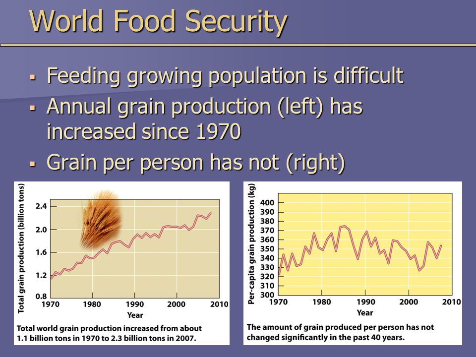 World Food Security Feeding growing population is difficult