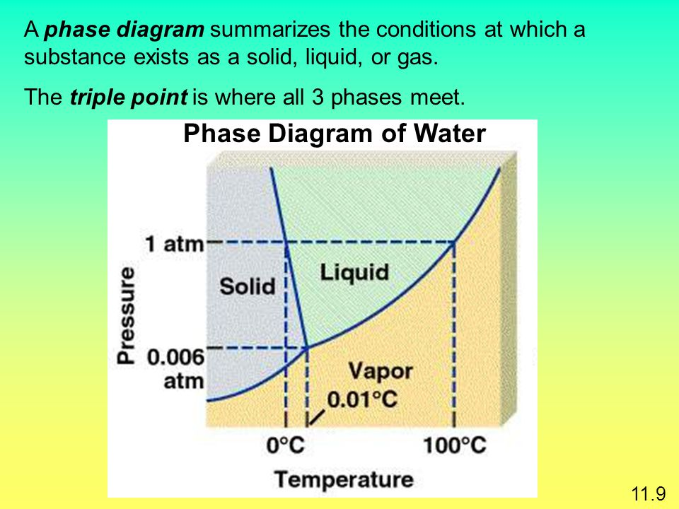A phase diagram summarizes the conditions at which a substance exists as a solid, liquid, or gas.