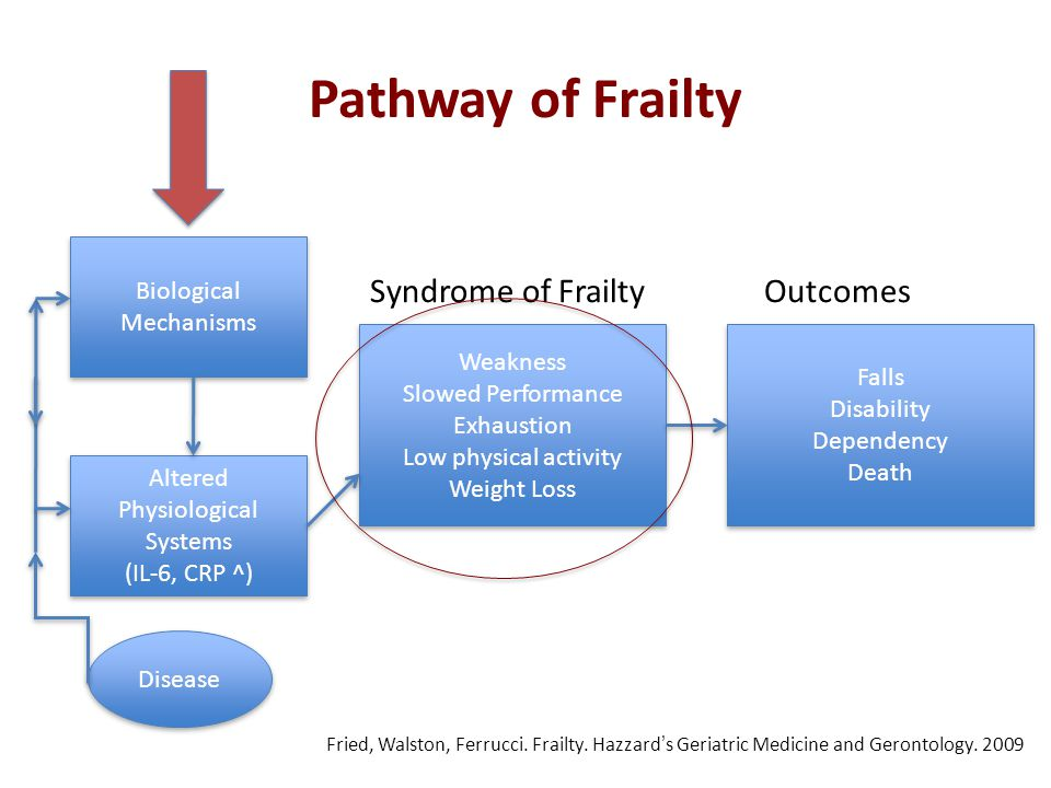 Aging Gracefully Through Cultural Competence: Frailty ...