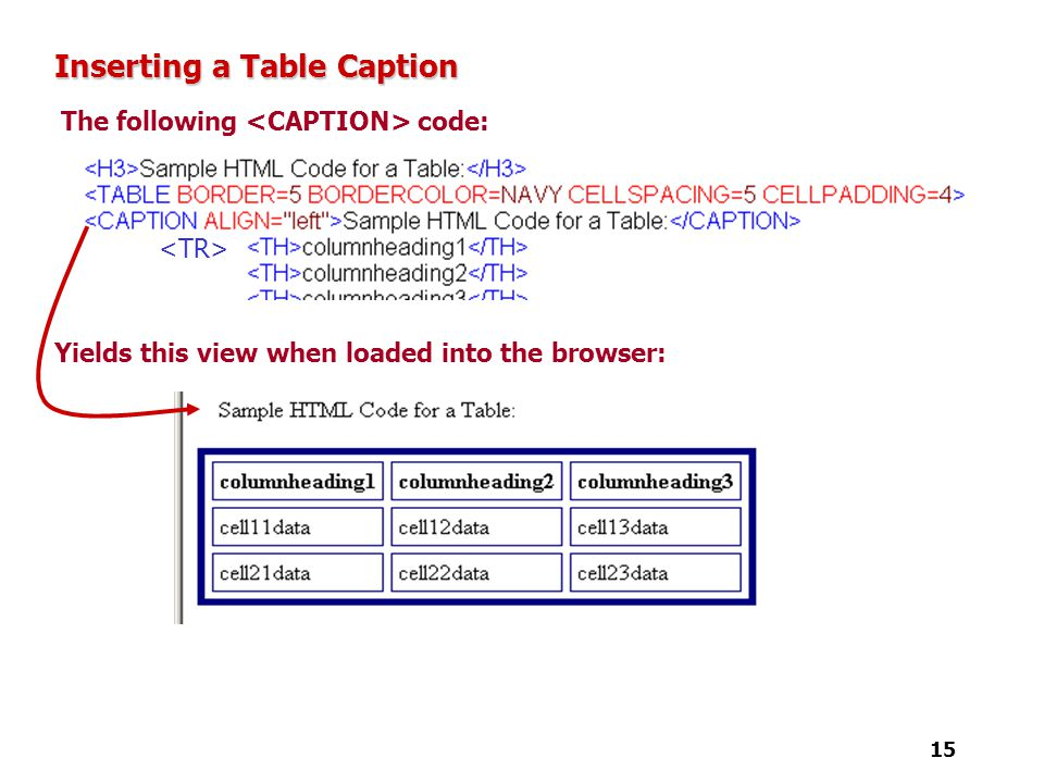 Tutorial 4 designing a web page with tables ppt video for Table caption