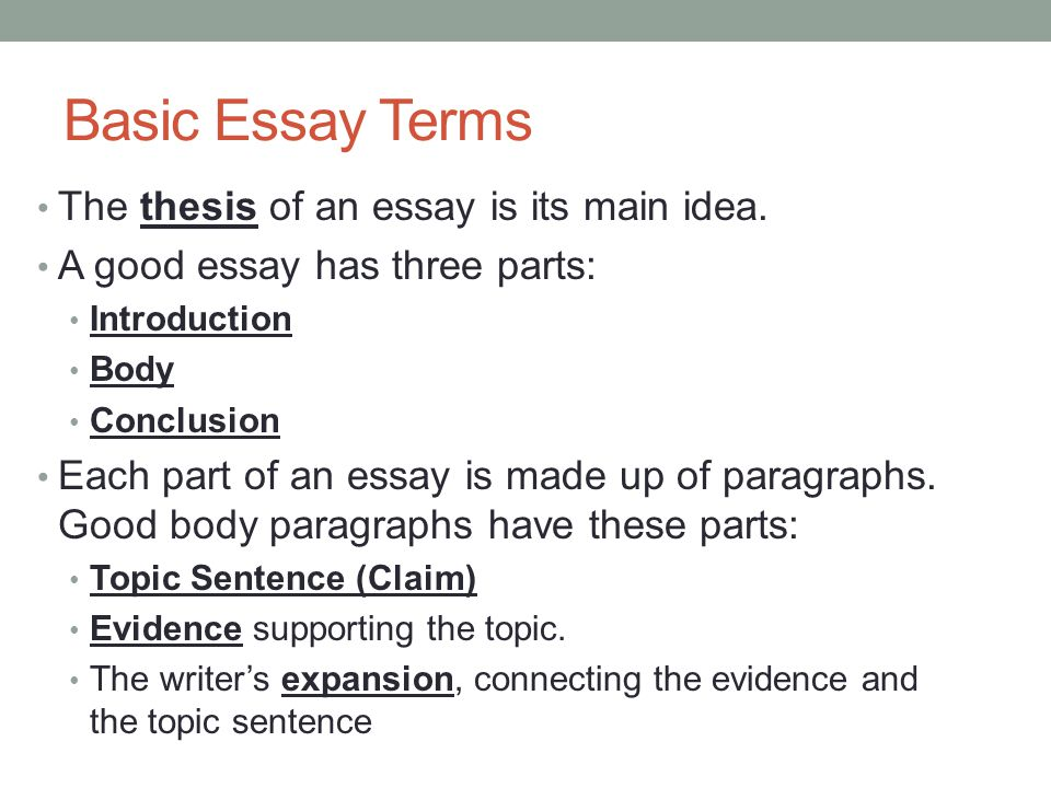 building an essay basic essay structure ppt video online  basic essay terms the thesis of an essay is its main idea