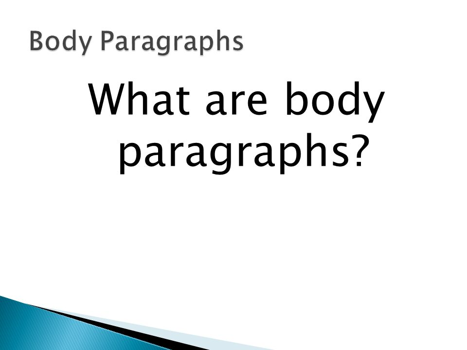 What are body paragraphs