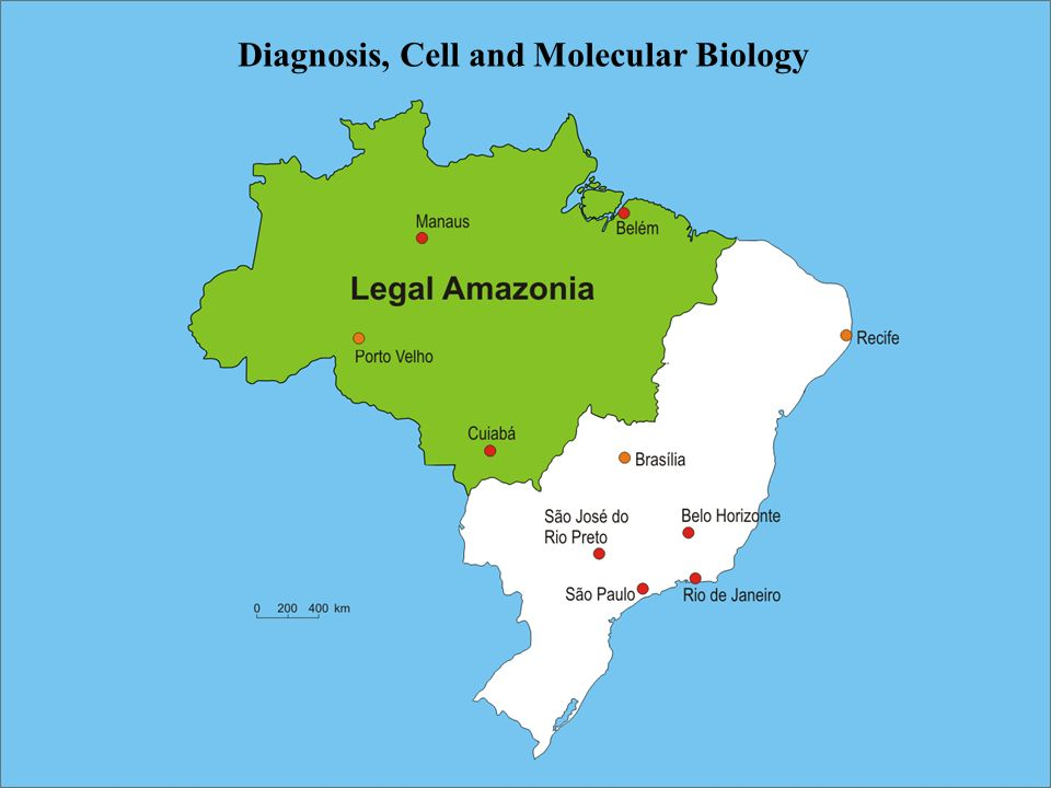 Diagnosis, Cell and Molecular Biology
