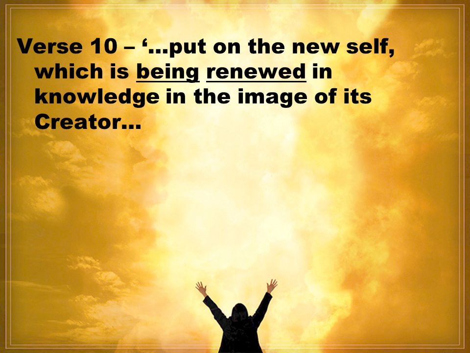 Verse 10 – '…put on the new self, which is being renewed in knowledge in the image of its Creator…
