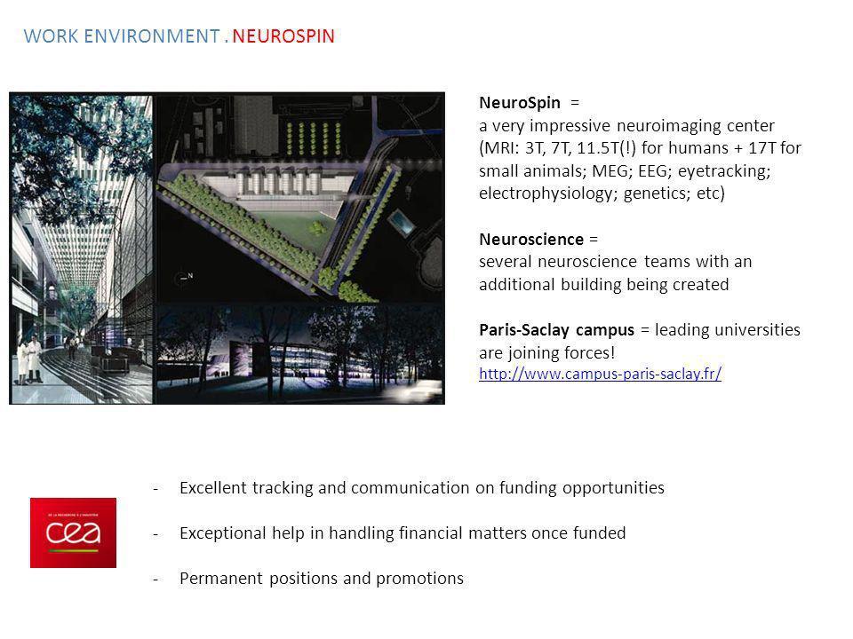WORK ENVIRONMENT . NEUROSPIN