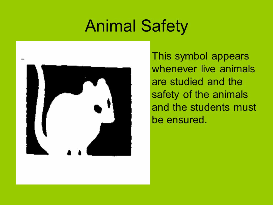 animal safety symbol - photo #7