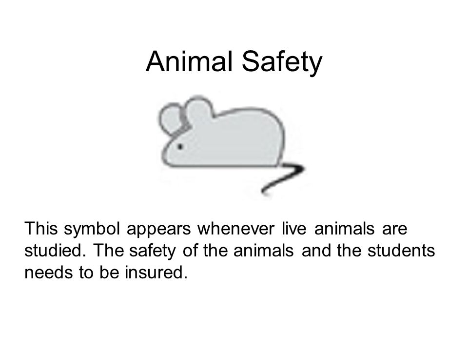 animal safety symbol - photo #39