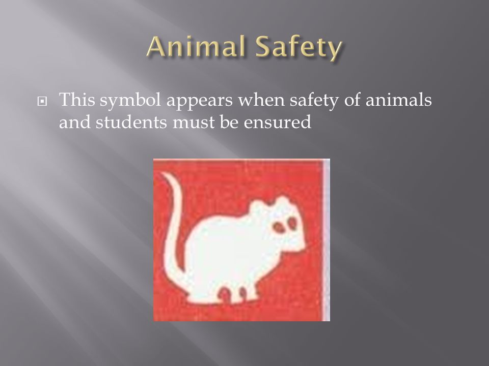 Animal Safety This symbol appears when safety of animals and students must be ensured