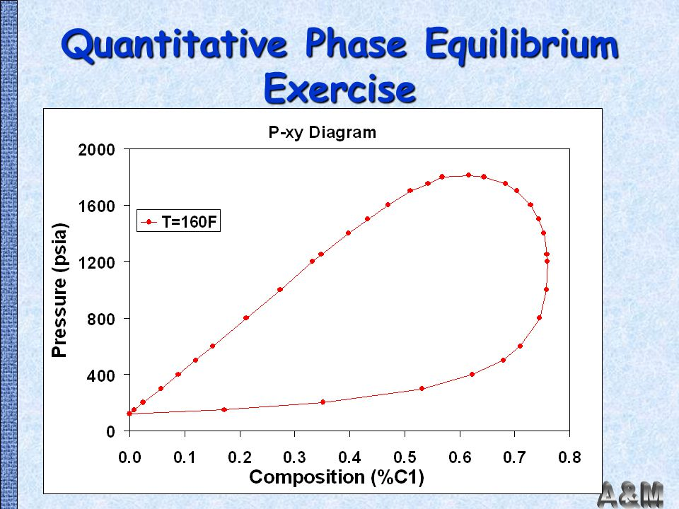 Quantitative Phase Equilibrium Exercise