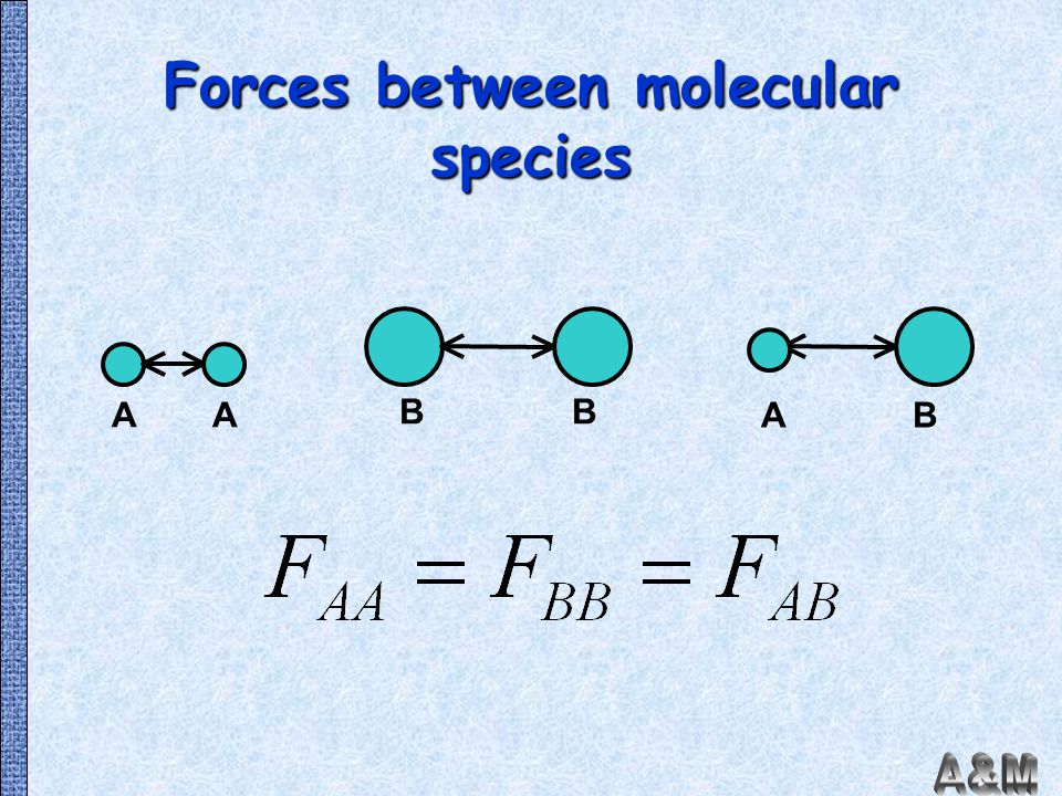Forces between molecular species
