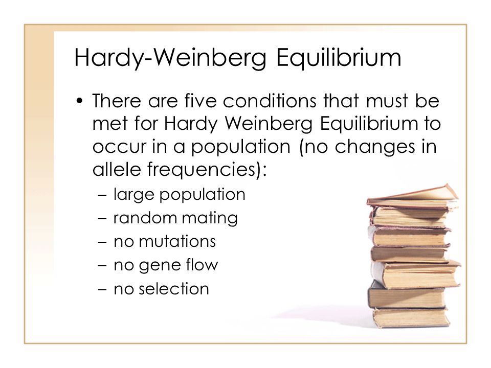hardy weinberg essay