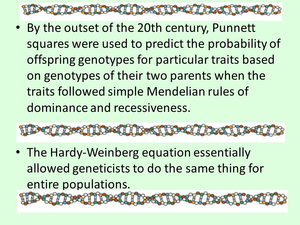 By the outset of the 20th century, Punnett squares were used to predict the probability of offspring genotypes for particular traits based on genotypes of their two parents when the traits followed simple Mendelian rules of dominance and recessiveness.