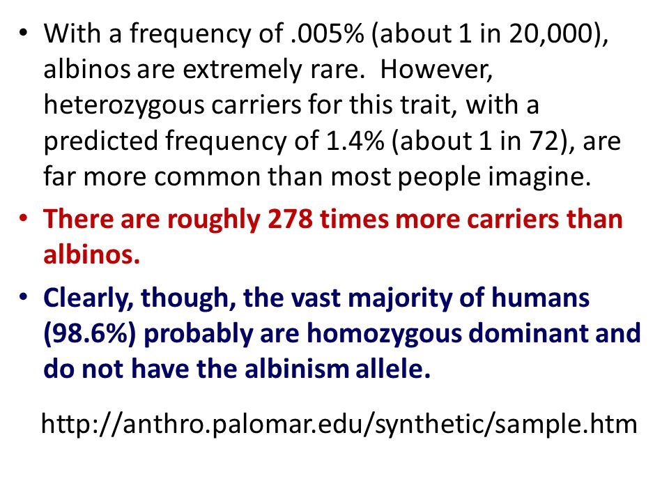 With a frequency of .005% (about 1 in 20,000), albinos are extremely rare. However, heterozygous carriers for this trait, with a predicted frequency of 1.4% (about 1 in 72), are far more common than most people imagine.