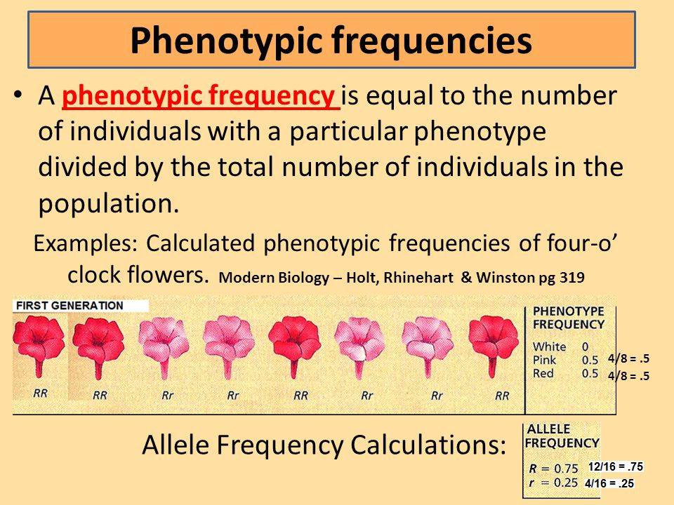 Phenotypic frequencies