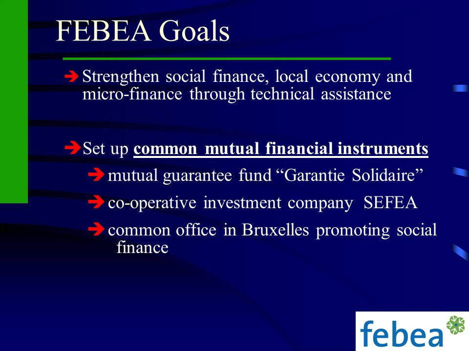 FEBEA Goals Set up common mutual financial instruments