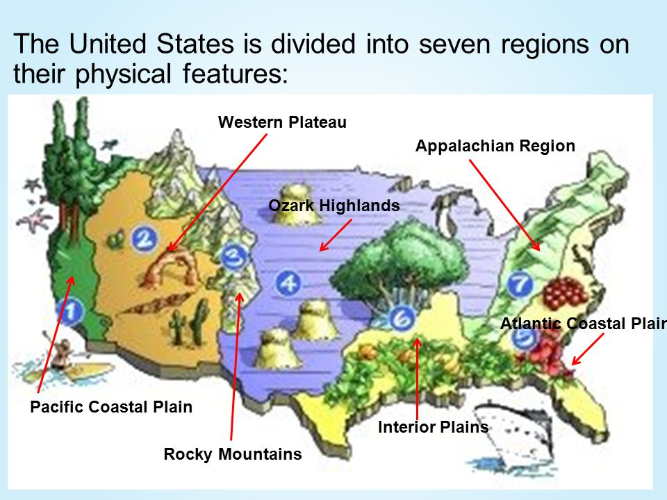 South Carolina Regions Ppt Video Online Download - Physical features in the united states