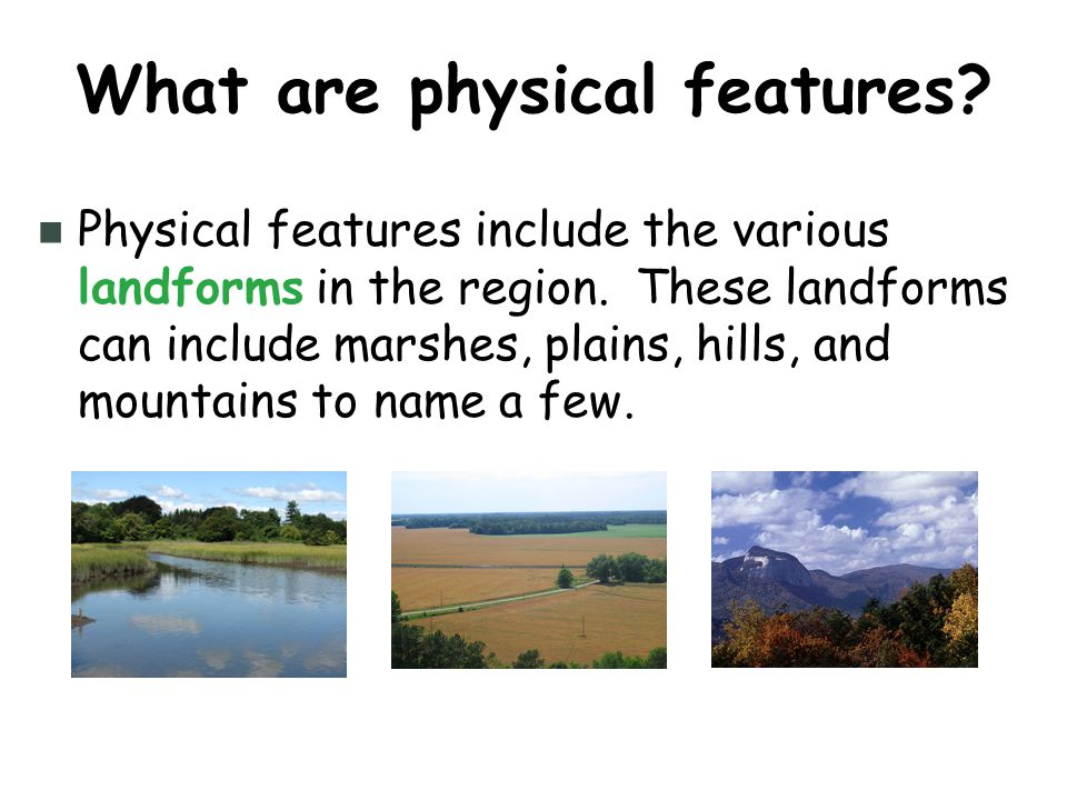 Let's Travel Through the Regions of South Carolina! - ppt download