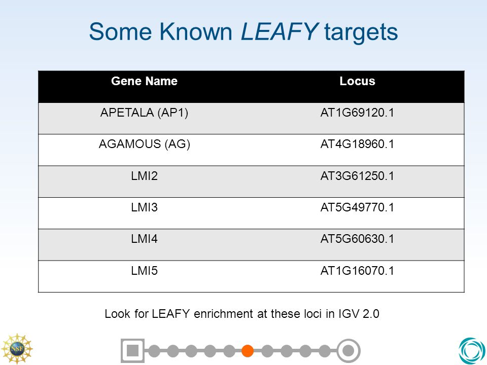 Some Known LEAFY targets