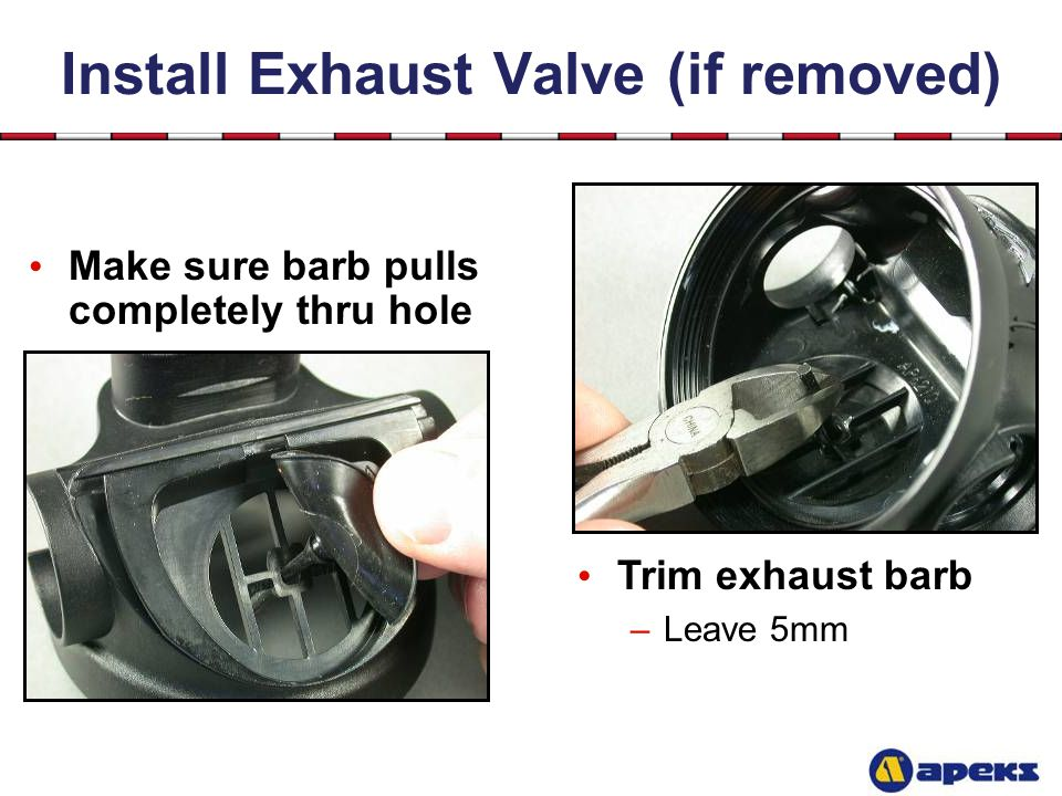 Install Exhaust Valve (if removed)