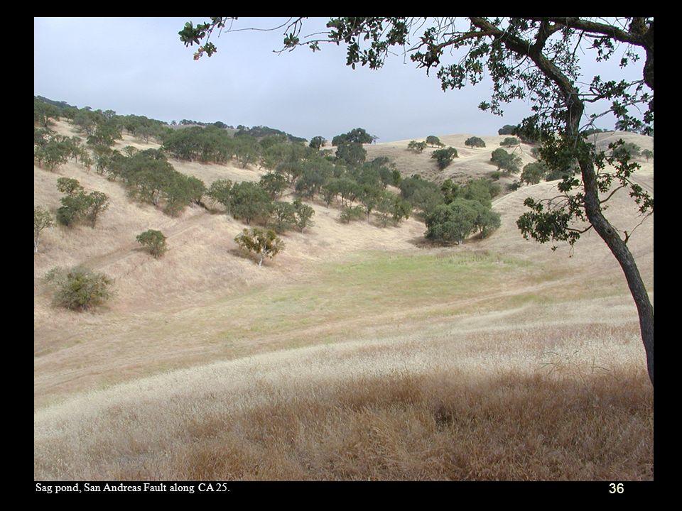 Sag pond, San Andreas Fault along CA 25.