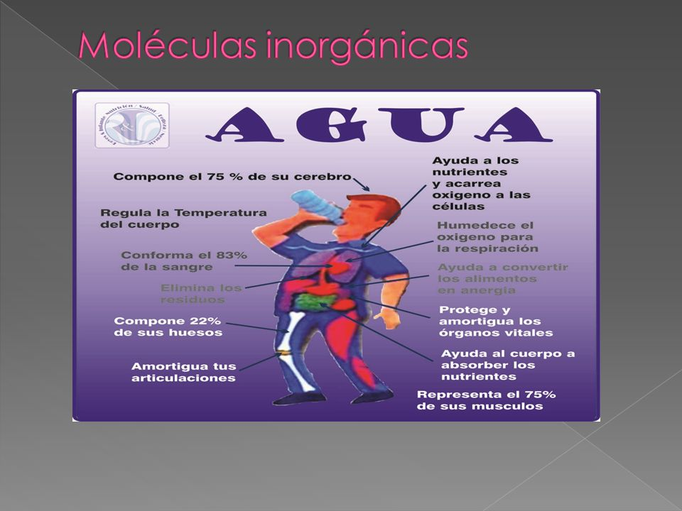 Moléculas inorgánicas