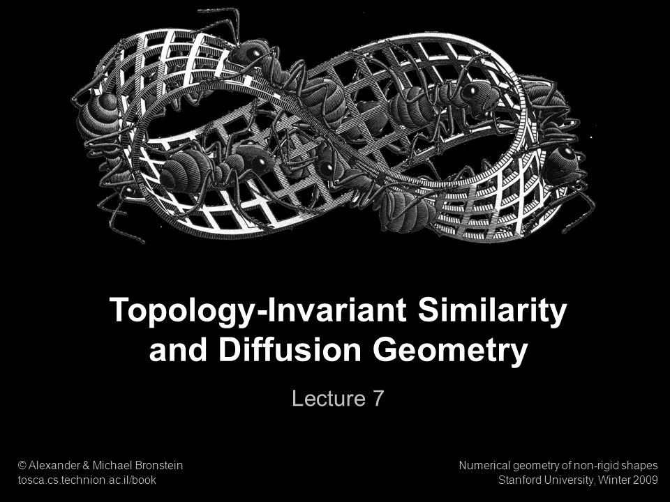 Topology-Invariant Similarity and Diffusion Geometry