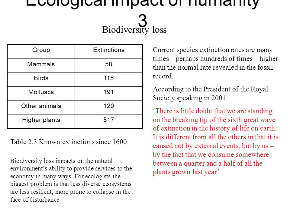 Ecological impact of humanity 3