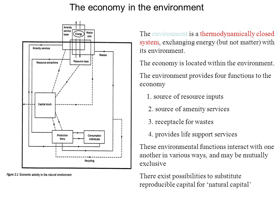 The economy in the environment