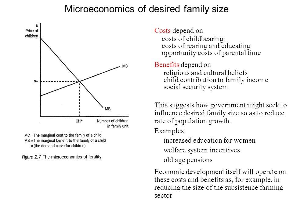 Microeconomics of desired family size