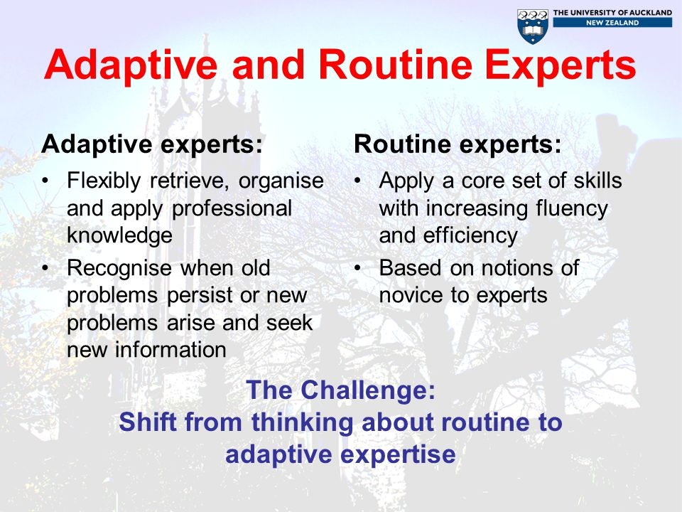 Adaptive and Routine Experts