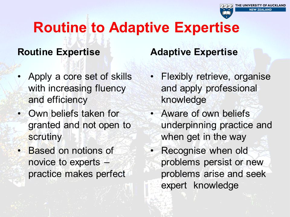 Routine to Adaptive Expertise