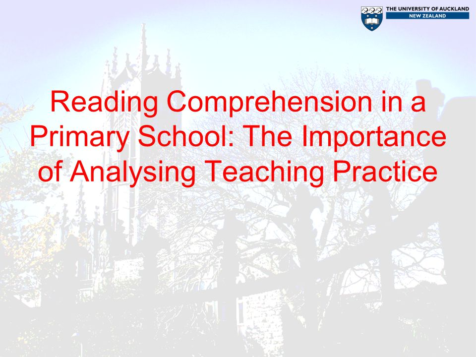 Reading Comprehension in a Primary School: The Importance of Analysing Teaching Practice