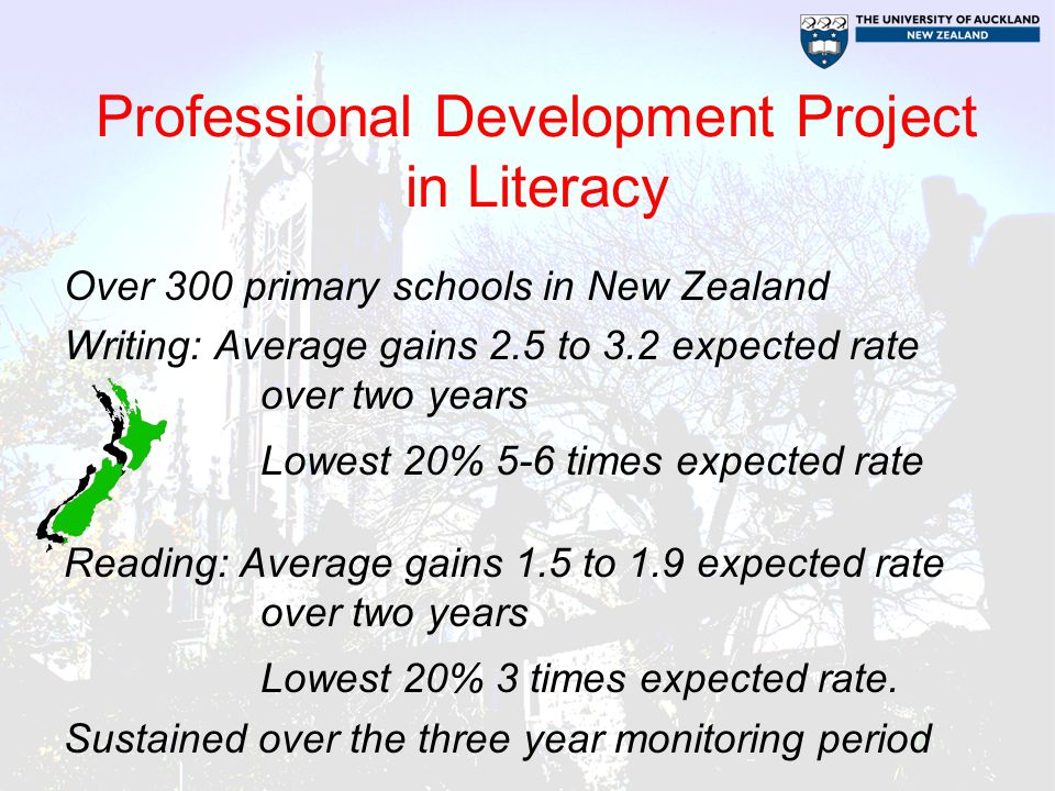 Professional Development Project in Literacy