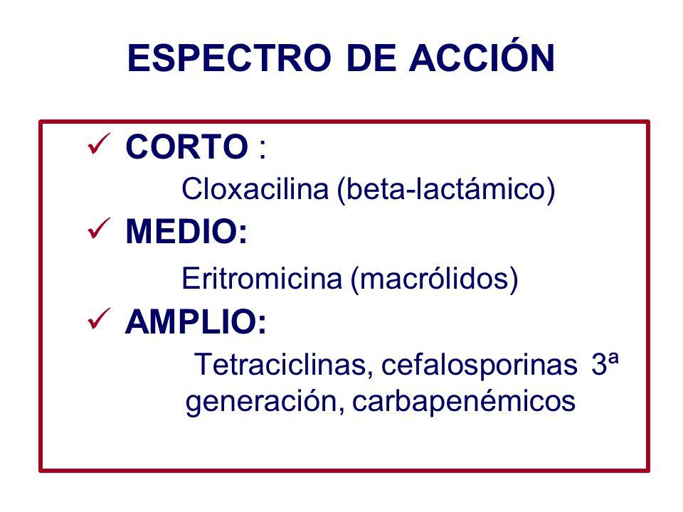 ESPECTRO DE ACCIÓN CORTO : MEDIO: Eritromicina (macrólidos) AMPLIO: