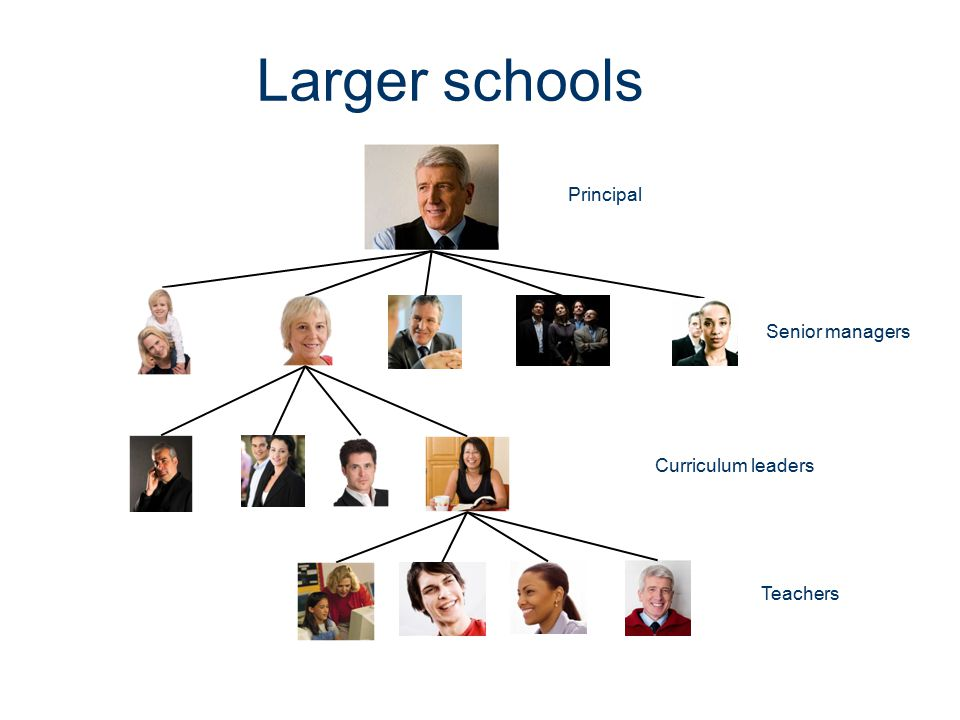 Larger schools Principal Senior managers Curriculum leaders Teachers