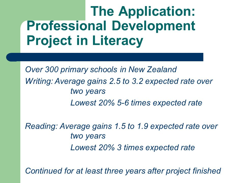 The Application: Professional Development Project in Literacy
