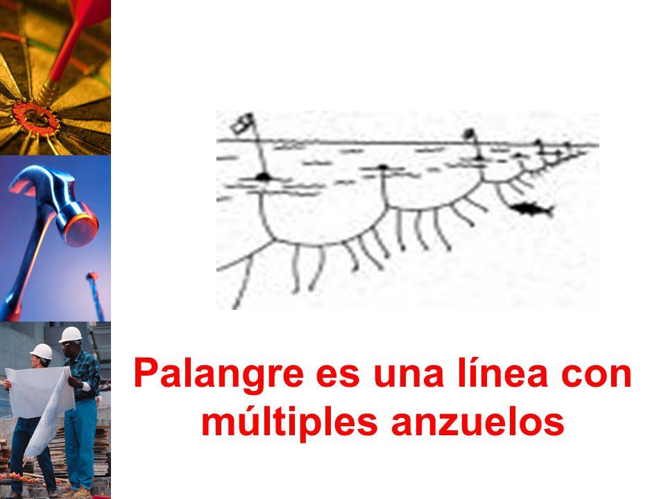 Palangre es una línea con múltiples anzuelos
