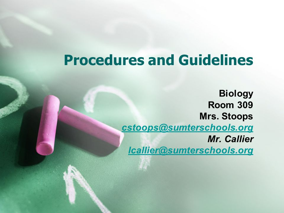 Procedures and Guidelines