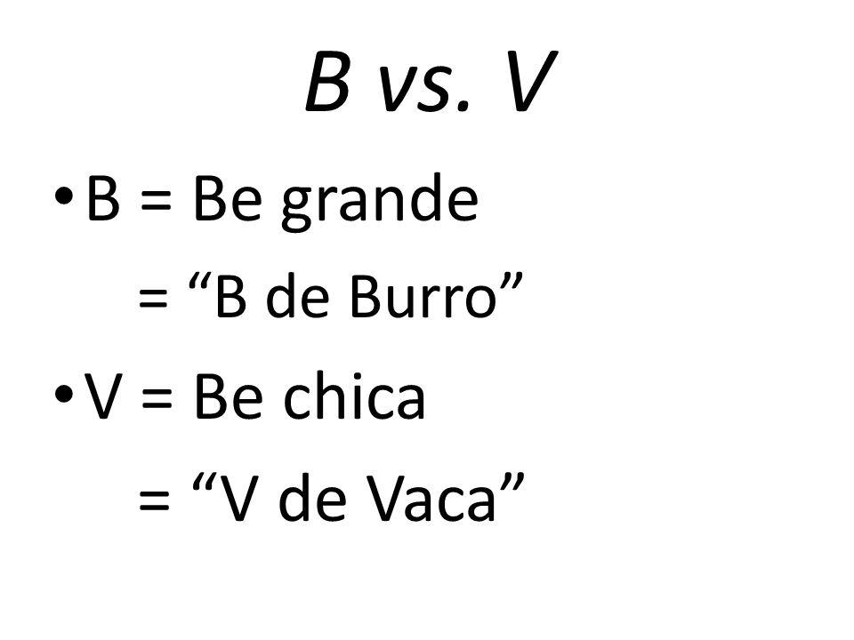 B vs. V B = Be grande = B de Burro V = Be chica = V de Vaca
