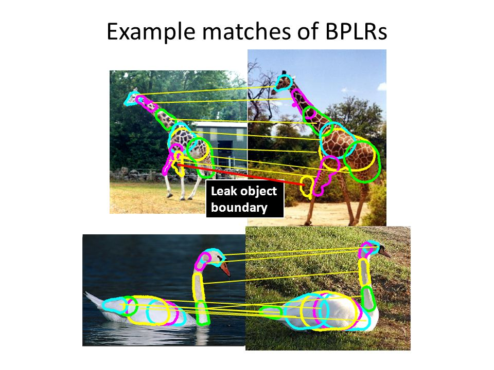 Example matches of BPLRs