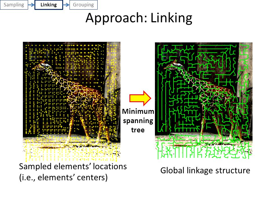 Sampling Approach: Linking. Linking. Grouping. Minimum spanning tree. Sampled elements' locations (i.e., elements' centers)